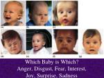 which baby is which anger disgust fear interest joy surprise sadness