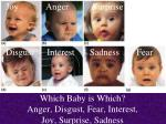 which baby is which anger disgust fear interest joy surprise sadness66