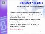amron system development plans