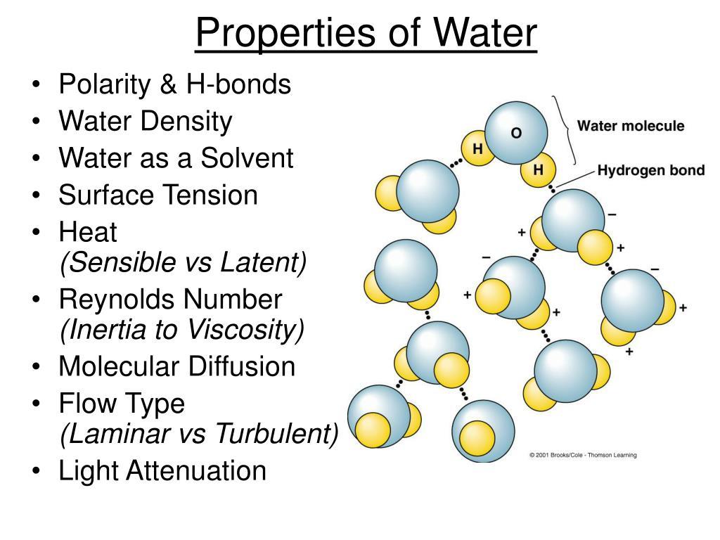 properties of water l.
