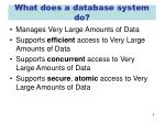 what does a database system do