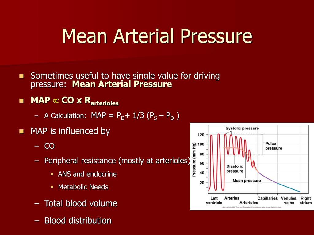 PPT - Blood Pressure PowerPoint Presentation, free..