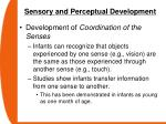 sensory and perceptual development54