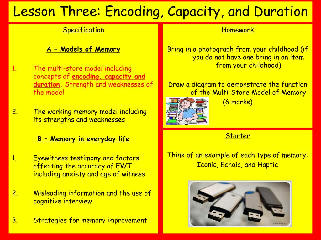 lesson three encoding capacity and duration l.