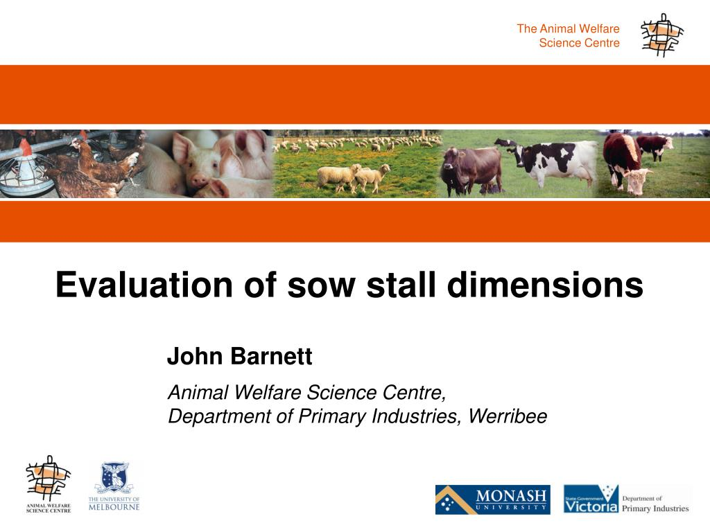 evaluation of sow stall dimensions l.