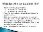 what does the raw data look like