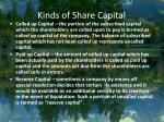 kinds of share capital22