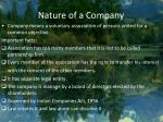 nature of a company