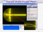 example of cfd process mesh