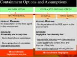 containment options and assumptions
