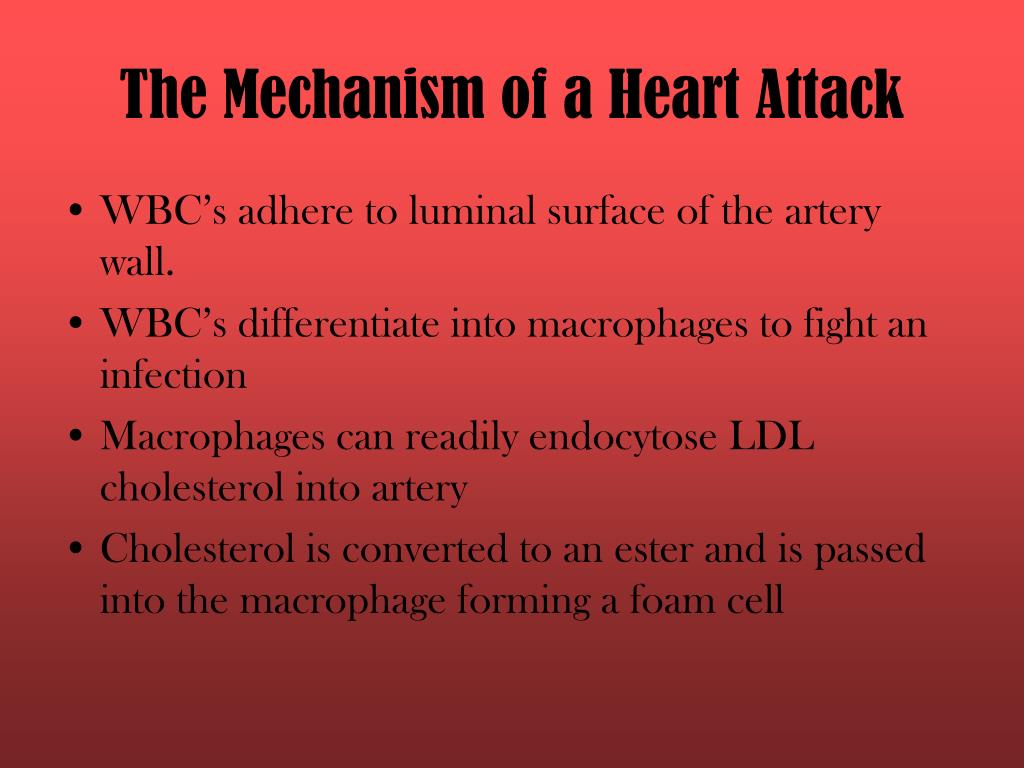 The Mechanism of a Heart Attack