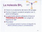 la molecola bh 3