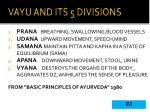 vayu and its 5 divisions