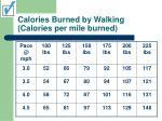 calories burned by walking calories per mile burned