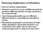 marketing implications of subculture