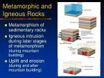 metamorphic and igneous rocks