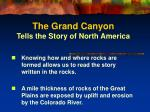 the grand canyon tells the story of north america