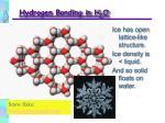 hydrogen bonding in h 2 o21
