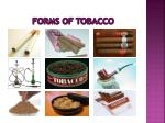 forms of tobacco19