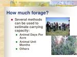 how much forage