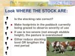 look where the stock are