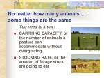 no matter how many animals some things are the same