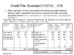 credit file example