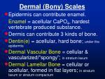 dermal bony scales