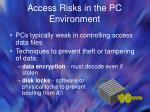 access risks in the pc environment