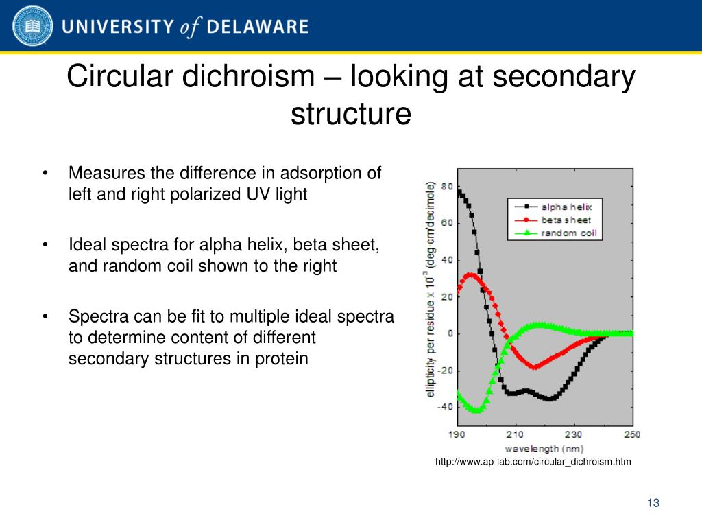 Circular dichroism – looking at secondary structure