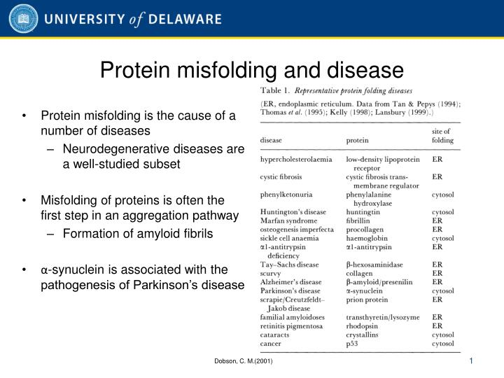 Protein misfolding and disease