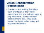 vision rehabilitation professionals
