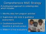 comprehensive m e strategy