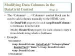 modifying data columns in the datagrid control page 2