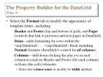 the property builder for the datagrid page 3