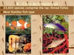 b class actinopterygii