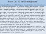 from ch 12 brute neighbors