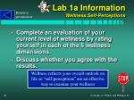 lab 1a information wellness self perceptions