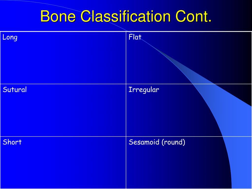Bone Classification Cont.