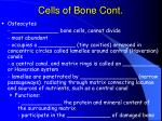 cells of bone cont