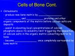 cells of bone cont20