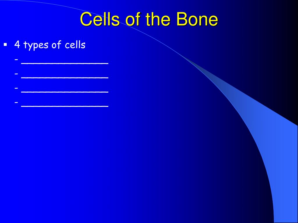 Cells of the Bone