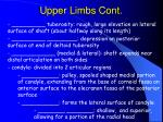 upper limbs cont
