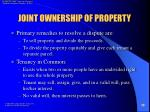 joint ownership of property28