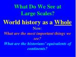 what do we see at large scales