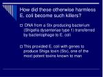 how did these otherwise harmless e coli become such killers