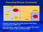 executing remote commands