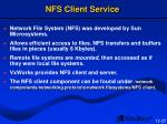 nfs client service