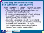a one stop shop on the path to self sufficiency case study 119