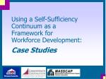 using a self sufficiency continuum as a framework for workforce development case studies